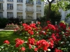 Place-Monge-Summer-Roses